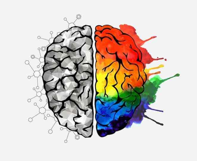 brain-concept.jpg
